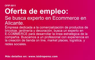 Oferta Empleo: Se busca experto en Ecommerce en Alicante.